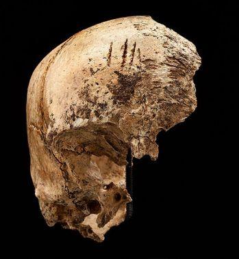 Jamestown-Cannibals-scull-715