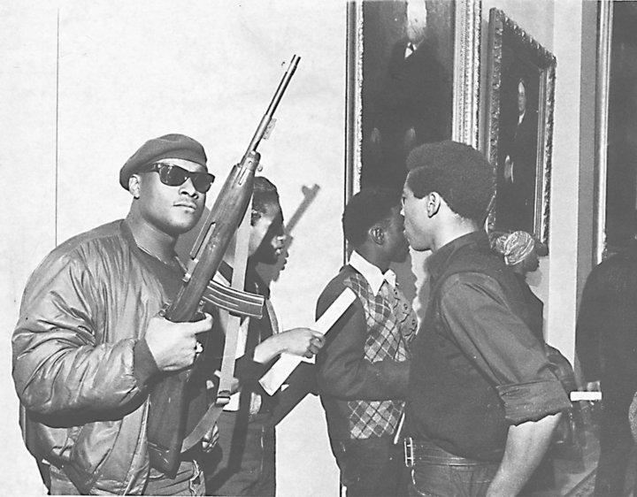 Panthers Guns